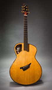 Insight guitar aaa bearclaw sitka spruce top padauk binding fan fret ziricote back and sides