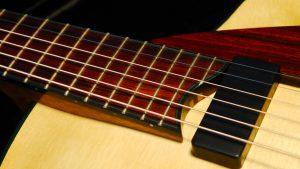 cocobolo fingerboard with ebony binding handmade archtop guitar